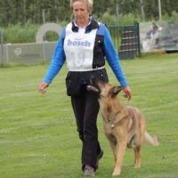Landesmeisterschaft ÖGV Luftenberg