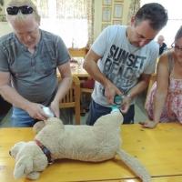 """Trainerfortbildung """"Erste Hilfe beim Hund"""""""
